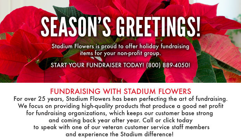 Everett & Lynnwood, WA Holiday Fundraising